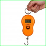 Portable Electronic Scale Max 40kg Weight
