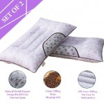 Set Of 2 Buckwheat Lavender Chinese Herbal Cassia Health Pillow-DT502